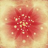 Soft pink flower