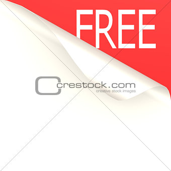 Free word with white paper