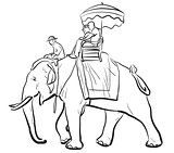 Elephant riding sketch