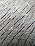 wooden surface macro