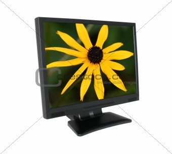 LCD screen with gorgeous flower #2