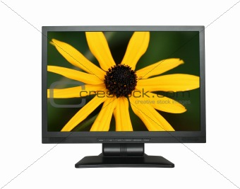 LCD screen with gorgeous flower
