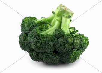 appetizing broccoli