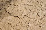 Cracked Mud Background