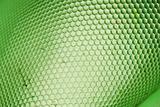 green beee hive