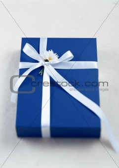 Blie Gift with White Ribbon