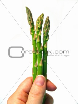 asparagus in hand