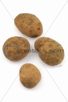 four potatos on white background