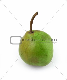 single pear on white