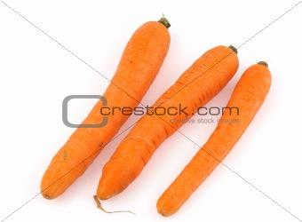 three carrots on white background.jpg