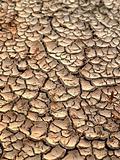 dry  earth