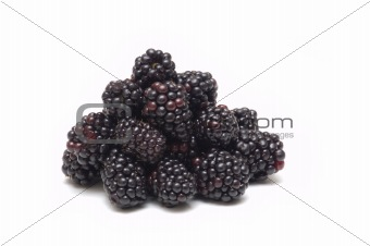 fresh blackberry on white background