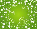 St. Patrick&#39;s Background