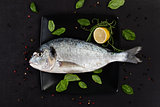 Sea bream. Luxurious seafood.