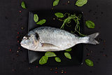 Sea bream on black plate.