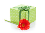 Orange gerbera flower and gift box