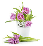 Pink tulips in metal flowerpot
