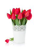 Red tulips in flowerpot