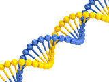 yellow blue DNA molecule