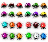 Ladybird set