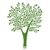 Vector tree silhouette, isolated on white background