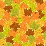 Maple leaf seamless pattern, vector seamless background: autumn