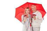 Smiling couple showing autumn leaves under umbrella