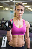 Portrait of fit woman exercising with dumbbell in gym