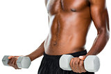 Mid section of fit shirtless man lifting dumbbells