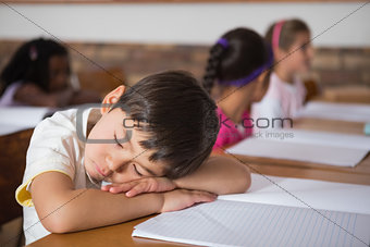 Sleeping pupil sitting at his desk