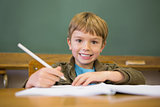 Happy pupil writing in notepad at desk