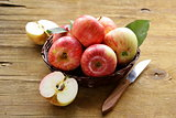 ripe red apples autumn harvest on a wooden background