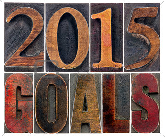 2015 goals in wood type
