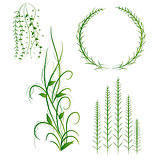 Grass With Flowers Set, Vector Illustration