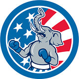 Republican Elephant Boxer Mascot Circle Cartoon