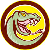 Rattle Snake Head Circle Cartoon