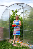 Woman with vegetables in a greenhouse