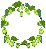 Wreath of hops in the form of a circle