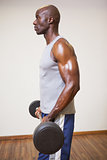 Muscular man lifting barbell in gym