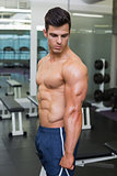 Shirtless muscular man posing in gym