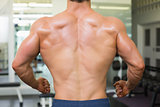 Close-up rear view of a bodybuilder in gym