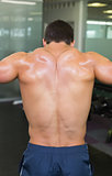 Rear view of a shirtless bodybuilder in gym