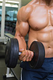 Mid section of shirtless young muscular man exercising with dumbbell