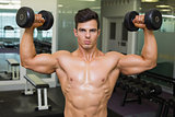 Shirtless muscular man exercising with dumbbells