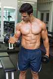 Shirtless muscular man exercising with dumbbells in gym