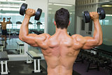 Rear view of shirtless muscular man exercising with dumbbells