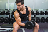 Young muscular man exercising with dumbbell