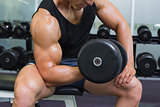 Mid section of muscular man exercising with dumbbell