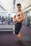 Shirtless muscular man posing in gym