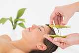 Attractive young woman receiving aloe vera massage at spa center